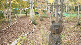 薪割りできます!アジア景観賞に選ばれた帯広の森を満喫!『はぐくーむ秋まつり』に参加しました!