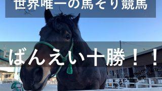 世界に唯一!帯広にしかない公営ギャンブル『ばんえい競馬』をやってみた